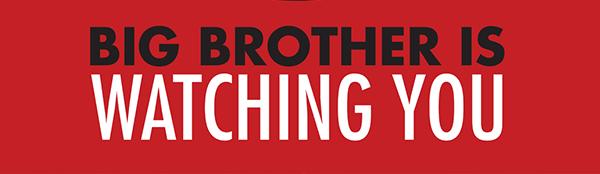 Et big brother samfund